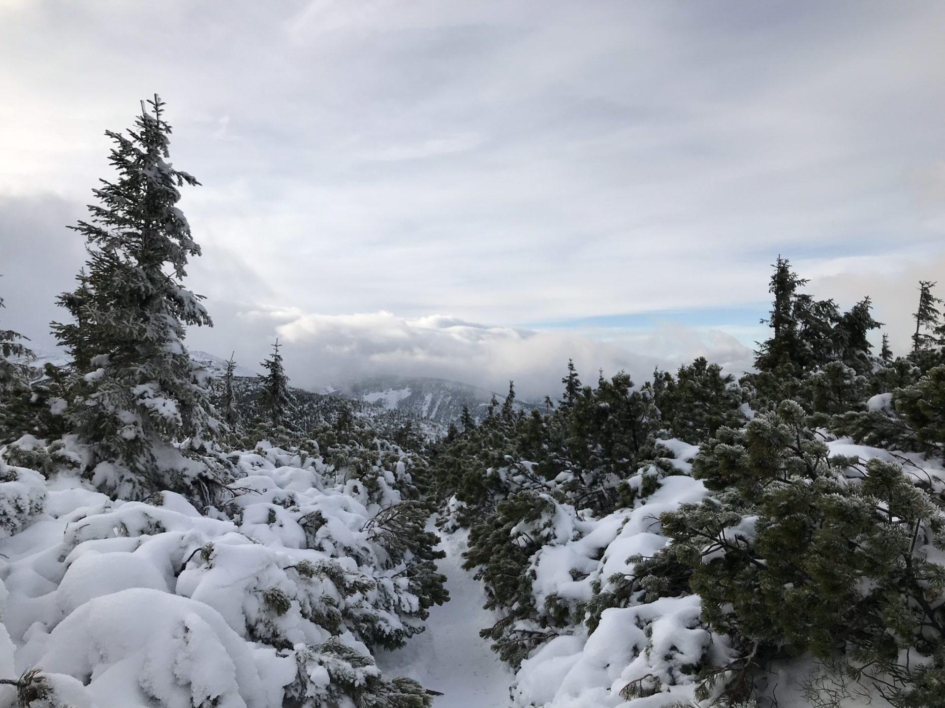 sněžka, krkonoše, hory, zima, sníh, turistika