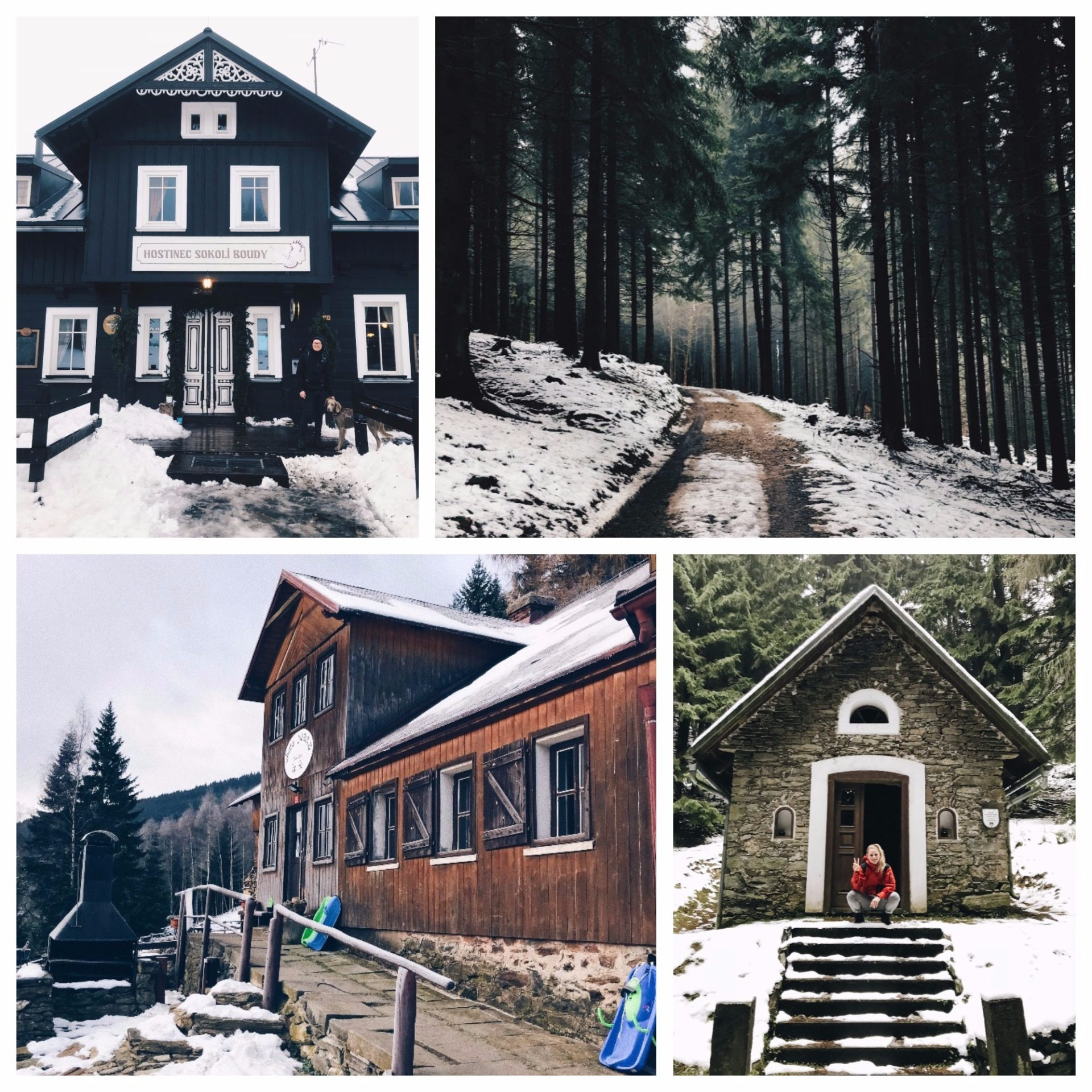 krkonoše, les, turistika, výlet, chata